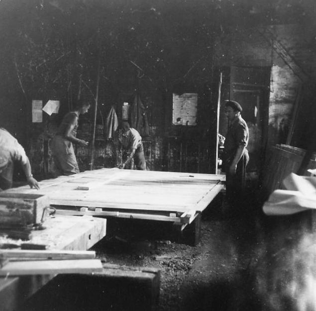 Les castors 1952