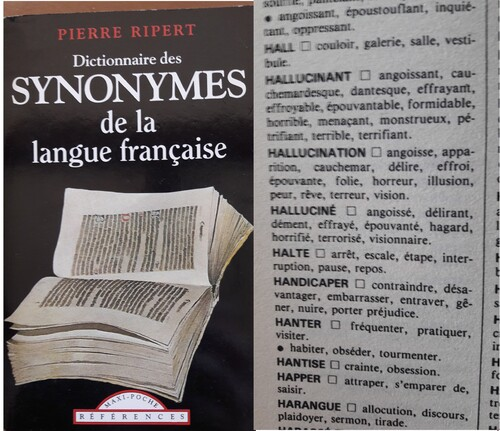 Le handicap à travers les dictionnaires