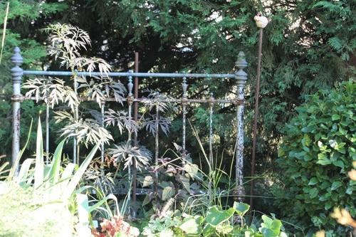 Gros plan sur la jardin