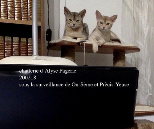 2020-On-Séme et Prèci-Yeuse