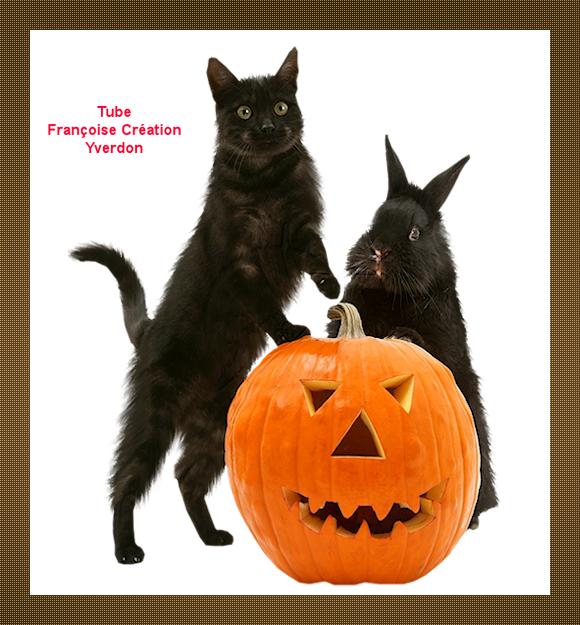 Animaux Halloween (01 à 10)