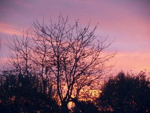 Mon ciel mardi matin