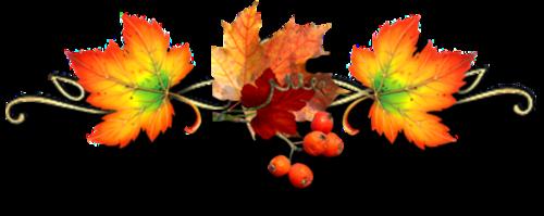 ♥ Couleur d'automne  ♥