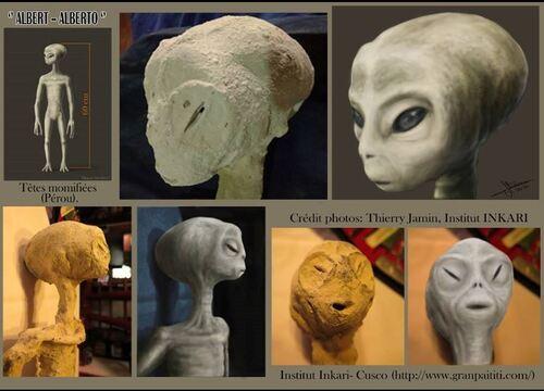 Des momies venues d'ailleurs