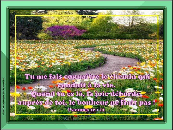 Tu me fais connaître le chemin - Psaumes 16 : 11