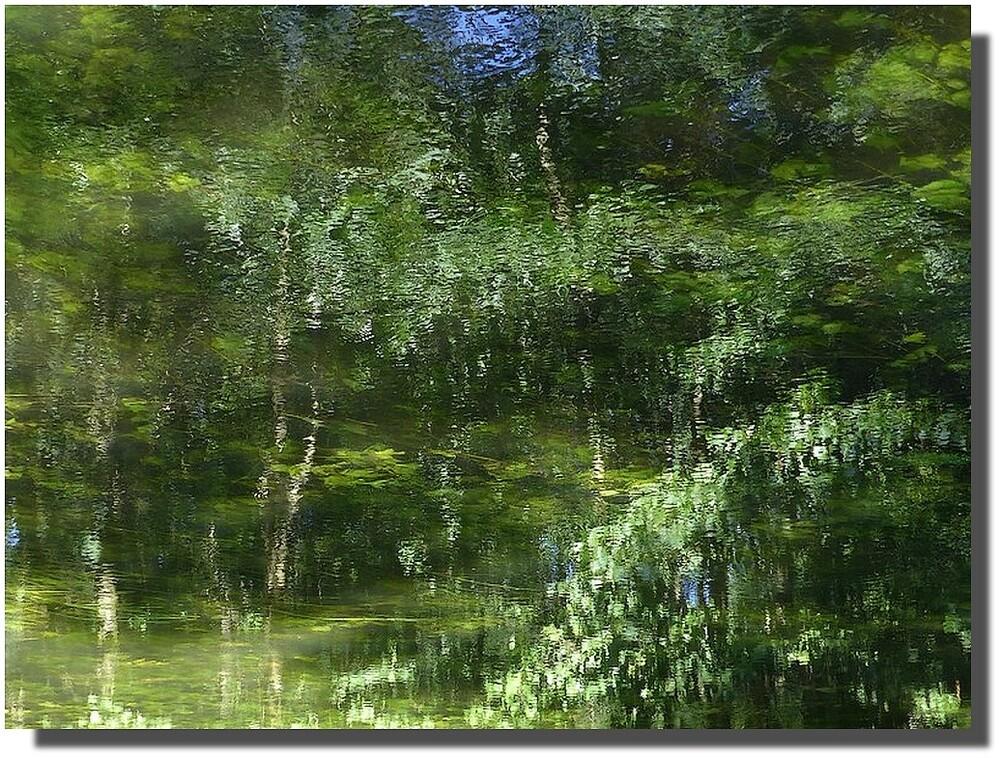 des forêts changeantes prenaient forme un bref instant, gommées par le moindre souffle de vent...