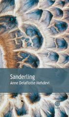Sanderling_s.jpg