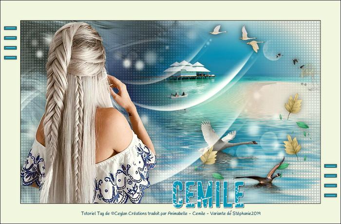 Tutoriel Tag de Ceylan/Animabelle ~ Cemile