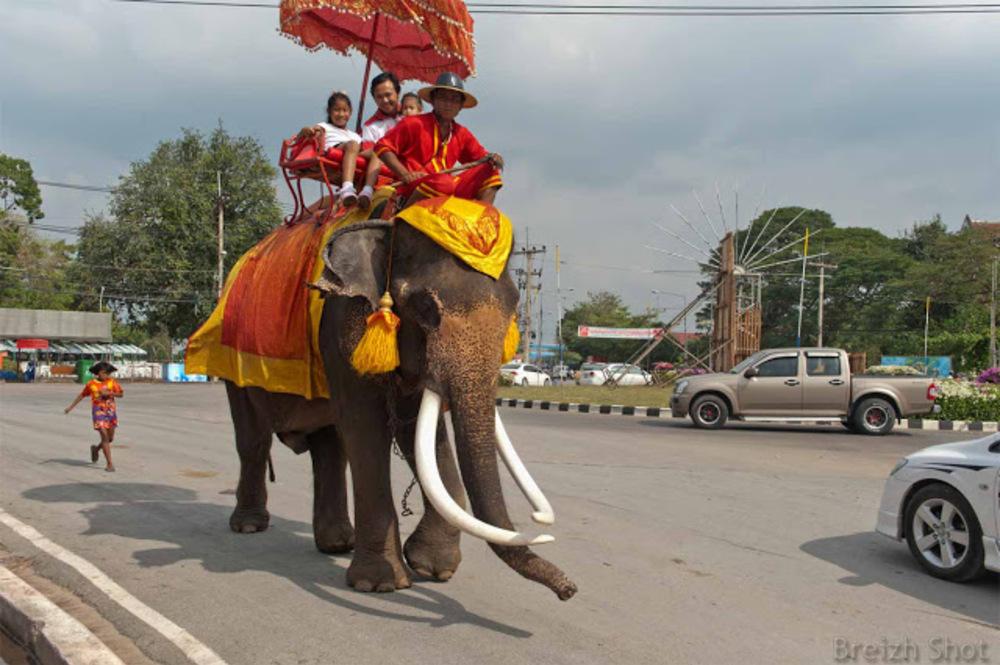 Ayutthaya - Retour de visite du parc historique d'Ayutthaya
