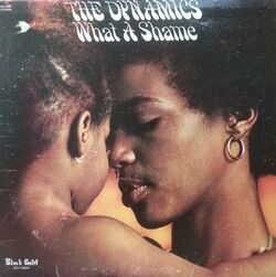 The Dynamics - What A Shame - Complete LP
