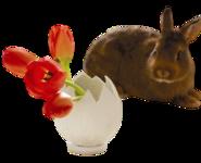 Húsvéti .png tubek