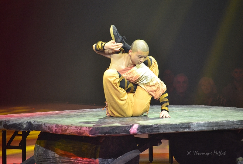 Cirque Phénix - Le Petit Dragon : Le final