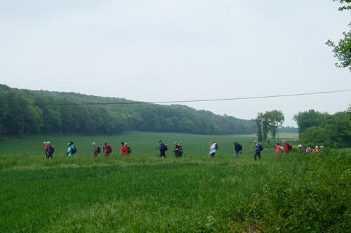 """""""Bois de Chevigny"""" - Mercredi 16 mai 2018"""