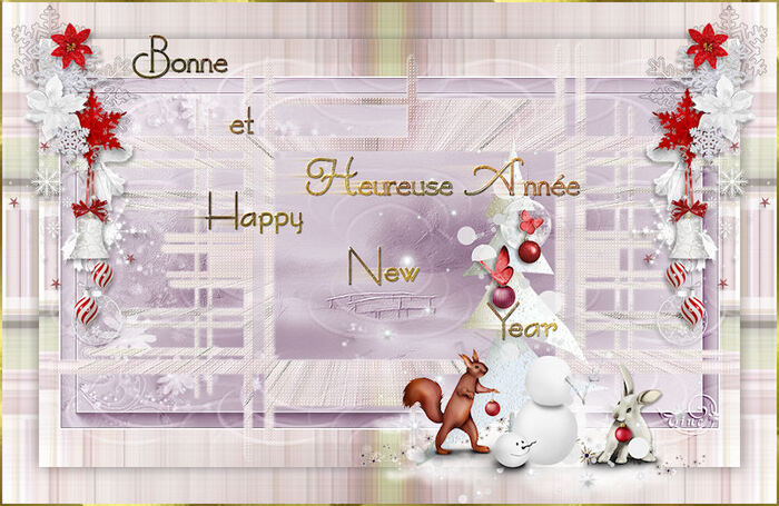 BONNE ANNEE - HAPPY NEW YEAR