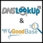 mygoodbase-et-dnslookup