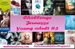 Récapitulatif Challenge littérature jeunesse & young adult #3