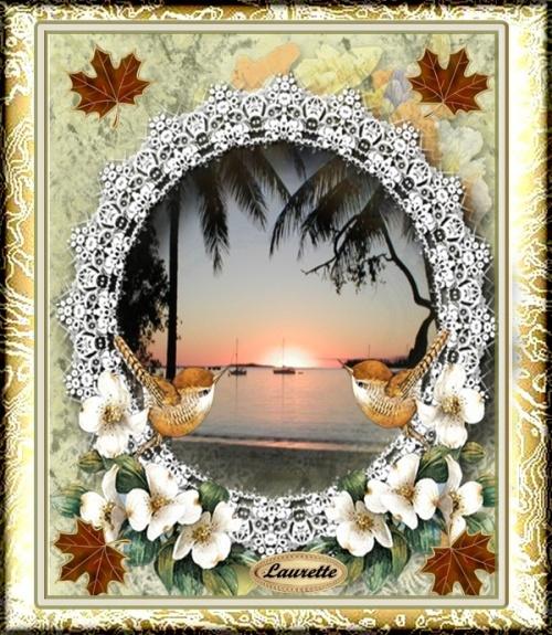 Bonjour en ce lundi 03/09/2012 ( début de ce blog)