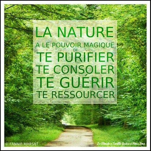 La nature me réjouit, me régénère, me fait du bien.