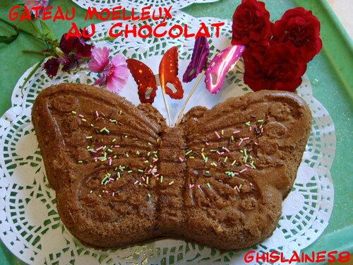 Gateau moelleux au chocolat (papillon)