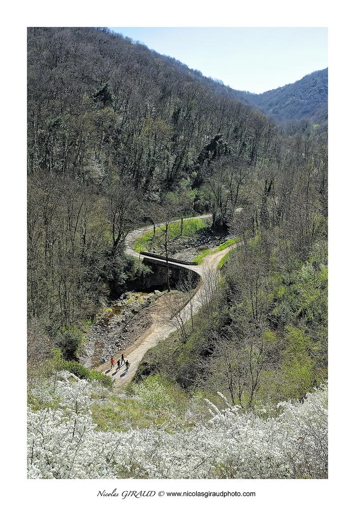 Escapade printanière en vallée du Rhône