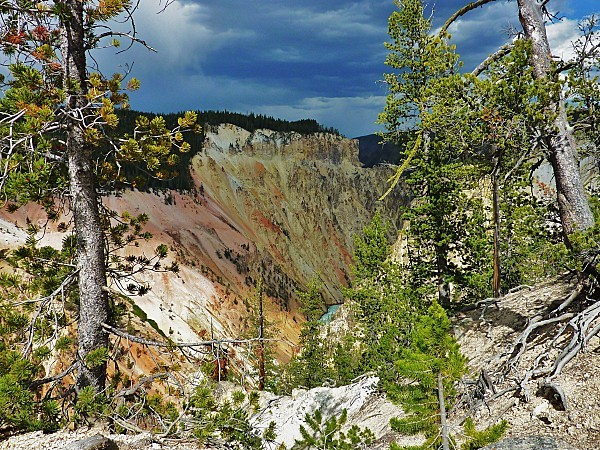 Jour 11 Yellowstone Canyon Artist Point (2)