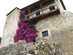 Costa Verde: Cantabrie - Asturies & Picos de Europa