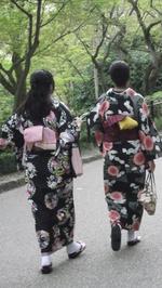 Règle et liberté, cadre et créativité : L'art du Kimono