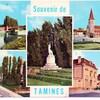 tamines 1981 belgique