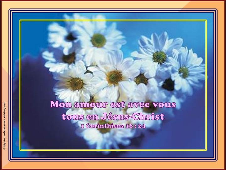 Mon amour est avec vous tous -  1 Corinthiens 16 : 24