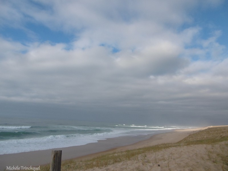 Une balade à la plage de la Lette Blanche, le 7 janvier (suite n° 2  et fin)....
