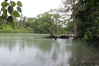 Costa Rica : au coeur de la nature 1