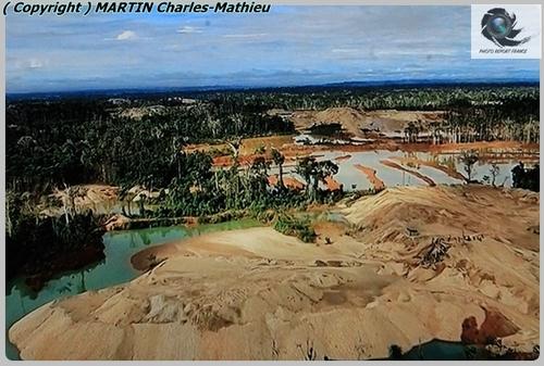 """La dégradation de l'amazonie """" document"""""""