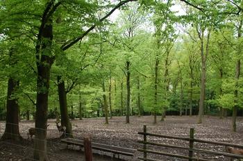 Parc animalier Bouillon 2013 enclos 190