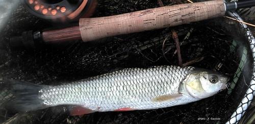 Les coins de pêche