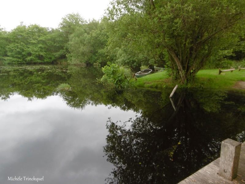 """Ma balade au Lac """"post confinement"""" (suite n° 2 et fin)..."""
