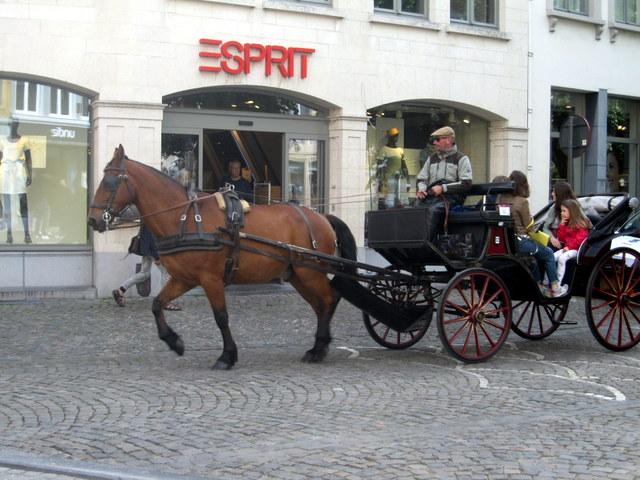 Brugges au trot