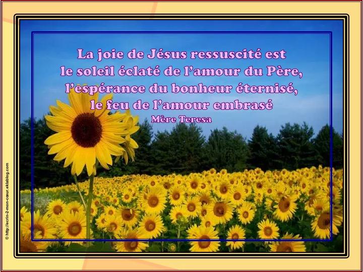 La joie de Jésus