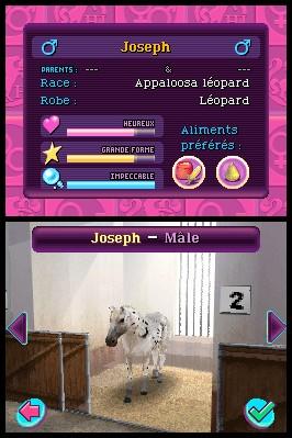 Horse Life 3 ™
