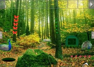Jouer à Peafowl forest escape