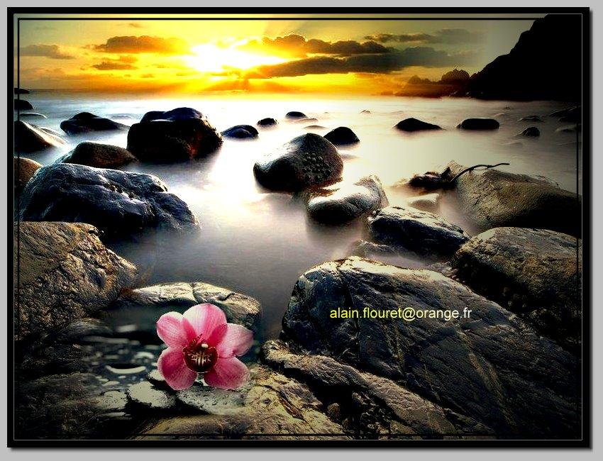 Funny images images droles zen for Photo ecran zen