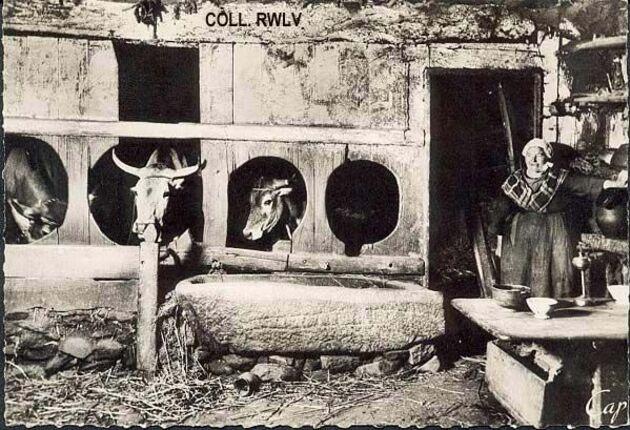 Carte postale étable bretonne