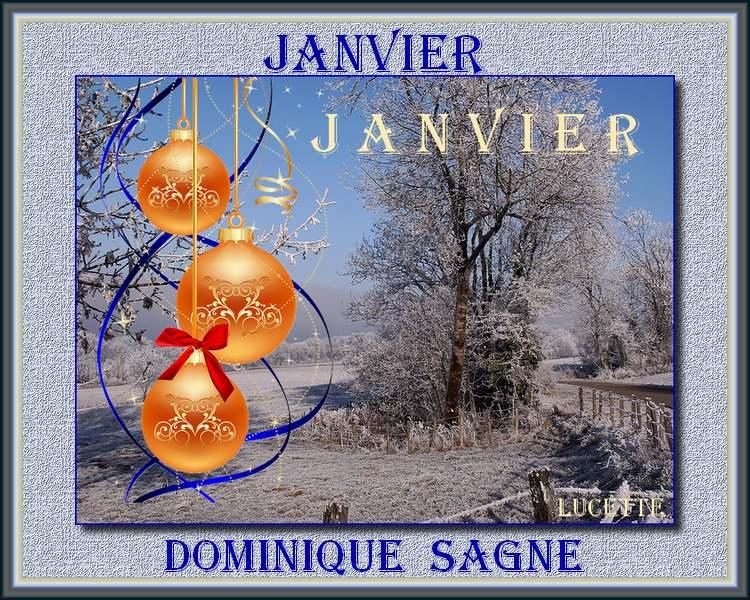""""""" Janvier """" poème de Dominique Sagne"""