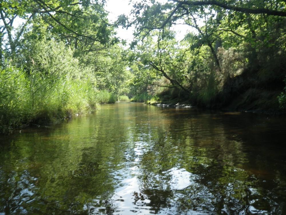 Le petit canal d'Arès en canoë...