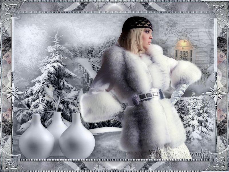 Cadres hiver 56