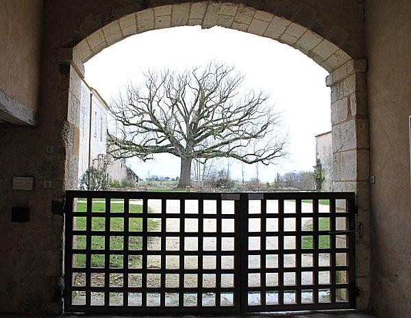 l'Abbaye de Sablonceaux 13