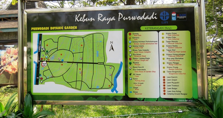 17 Juillet 2018 - Le jardin botanique de Purwodadi