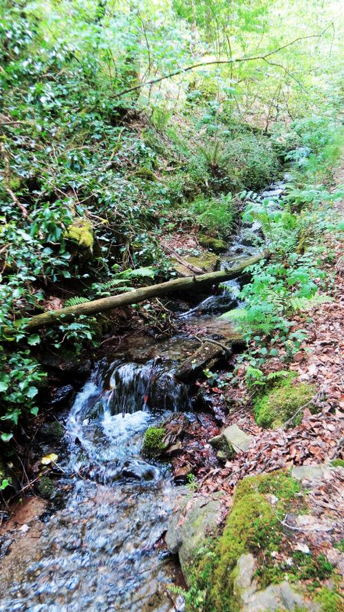 De Saint Nicodème à Saint Nicolas : Chemin de halage du Blavet