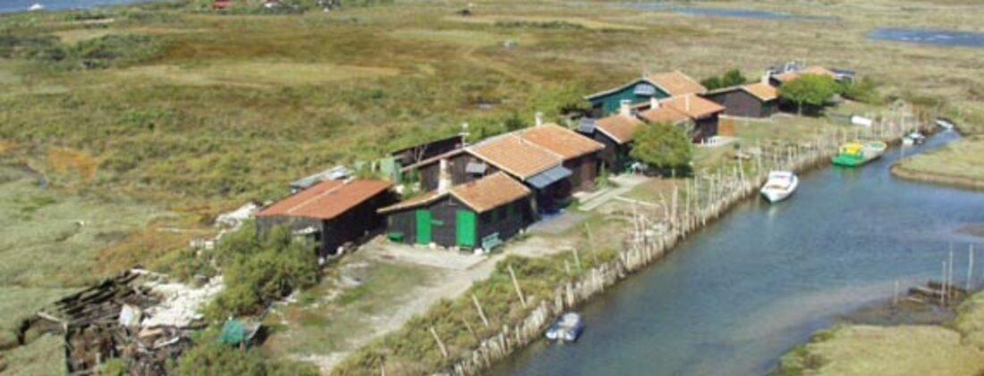 Tour du Bassin d'Arachon 5: Île aux oiseaux