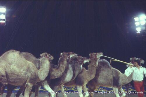 Jean Pierre RICHARD au cirque Pinder Jean Richard ( archives Thierry Baleige)