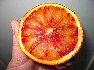 orange_coupee.JPG